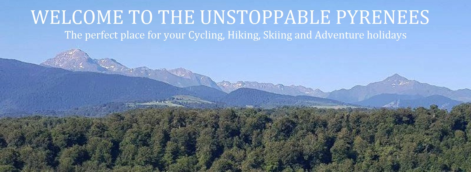 Unstoppable Pyrenees